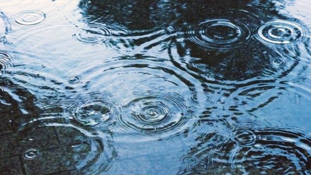 普通の雨はpH5.6程度