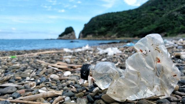 海岸に流れ着いたプラスチックごみ